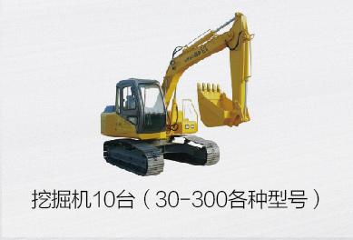 挖掘机10台(30-300各种型号